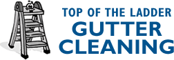 Top of the Ladder Gutter Cleaning