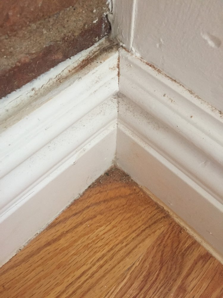 Dirty Baseboards